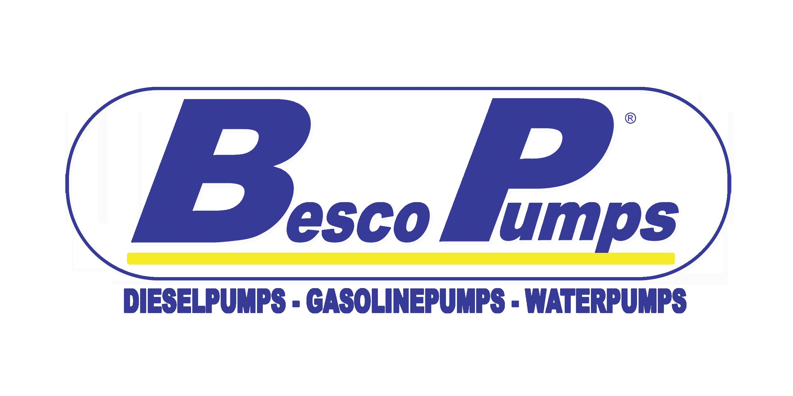 LOGO BESCO PUMPS